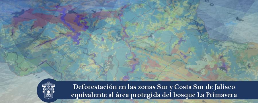 Banner: Nota deforestación