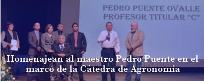 Banner: Homenaje al maestro Pedro Puente Ovalle